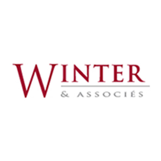 Logo winter et associes nikita
